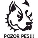 Pes 3