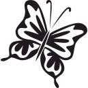 Motýľ 5